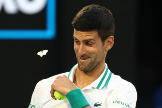 Novak Djokovic's ability to recover from injury mid-match has become one of the world No.1's calling cards.