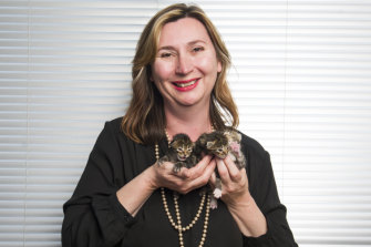 """RSPCA ACT chief executive officer Michelle Robertson with kittens that will be recognised as """"sentient beings""""."""