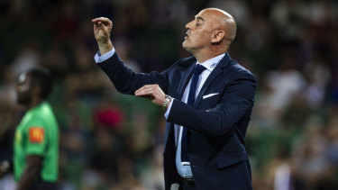 Keeping composed: Victory coach Kevin Muscat.