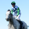 Sky's the limit for Puissance De Lune progeny