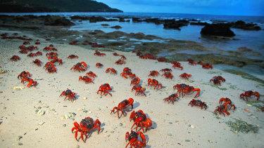 Christmas Island.