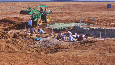 """The team used earth movers to get at the enormous bones at the site at Cooper Creek, after which the main specimen, """"Cooper"""", was named."""