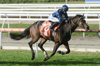 Do You Reckon will line up in the Melbourne Cup Country Carnival Final on Oaks Day.