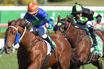 Caccini leads all the way for James Innes jnr in the Highway Handicap at Randwick.