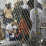 The US incarcerates more children than any other country: UN expert