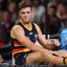 Relief for Crows: Seedsman escapes ACL injury