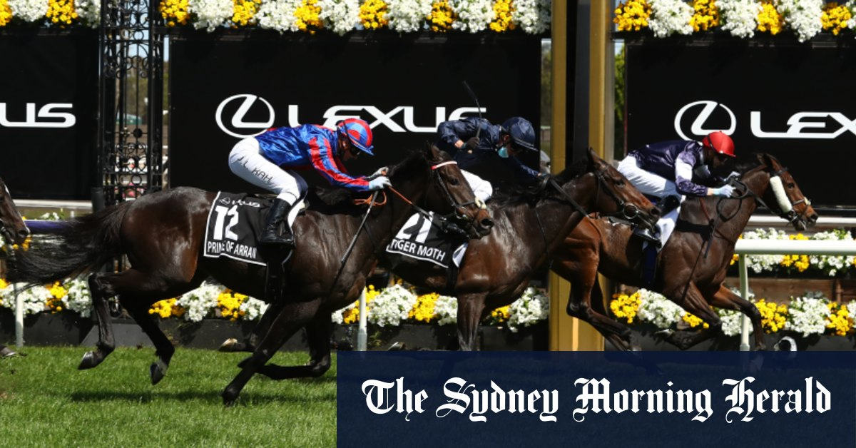 Strict new vet tests rule out Prince Of Arran Melbourne Cup campaign