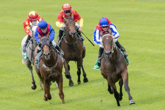 Bazooka (right) wins at Warwick Farm in February 20 but has been unlucky since.