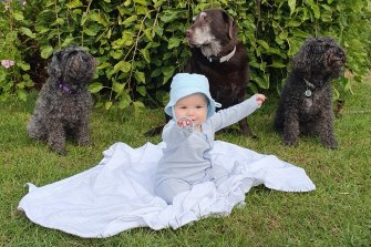 Baby Charlie with her friends and protectors Koko (left), Lulu and Bolt.