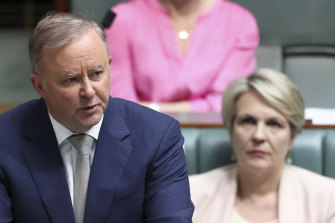 Opposition Leader Anthony Albanese and Shadow Minister for Education and Training Tanya Plibersek during Question Time.