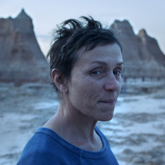 Frances McDormand plays Fern, a widow forced into a nomadic life to secure work in Nomadland.