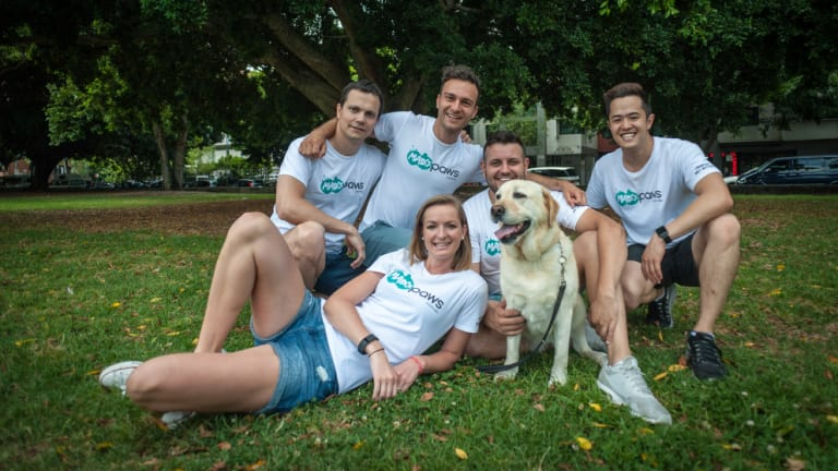 The Mad Paws team care for pets both on and off site.