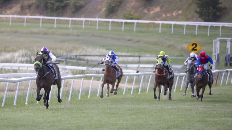 Troy Phillips rides the Joe Cleary-trained Concrete to a thumping win in the first at Queanbeyan on Boxing Day.