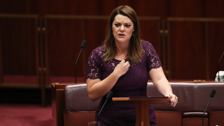 Sarah Hanson-Young was the subject of lewd comments from Senator David Leyonhjelm.