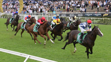 There are nine races scheduled for Rosehill today.
