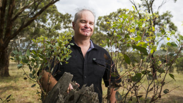 Associate professor at UNSW Canberra Jason Sharples is researching how a controllable bushfire turns into a firestorm.