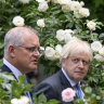 'Like comparing apples with dried oranges': Will Australia ruin British farms?