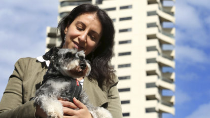 Dogs of war: Sky's the limit for Horizon debacle