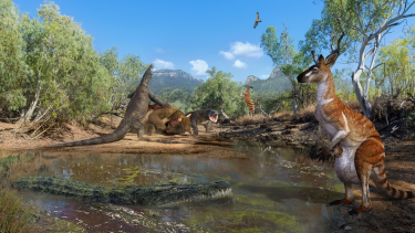 An artist's impression of several of the species whose fossils were discovered at the South Walker Creek site, including giant kangaroos, lizards and crocodiles.