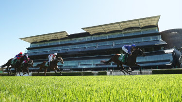 Satin Rain ran midfield in the group 3 Adrian Knox Stakes (pictured) won by Colette.