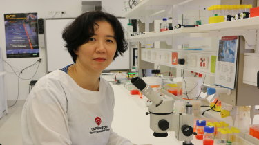 Associate Professor Michelle Hill discovered how cholesterol levels affect advanced prostate cancers.