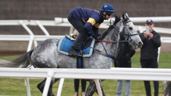 Chautauqua to trial at The Valley, with The Everest on the horizon