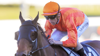 Aged to perfection: Dreamforce 'on the up' for tilt at another group 1