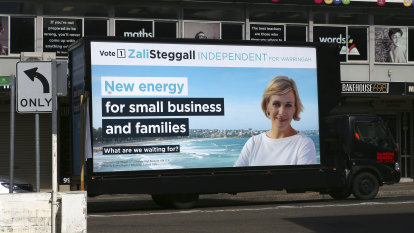 A Warringah mystery: who's behind anonymous campaign targeting Zali Steggall?