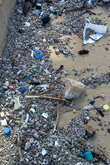 Pumice as well as plastic waste washed up on a Queensland beach in 2013.