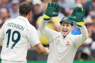 Glove is in the air ... Tim Paine has won plenty of admirers since stepping up as Test captain in difficult circumstances.