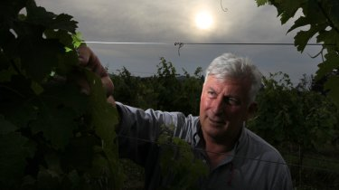 Hunter Valley winemaker Mark Davidson, from Tamburlaine Organic Wines.