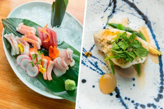 The sashimi and Patagonian toothfish.