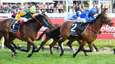 Trekking triumphs in the Schillaci Stakes.