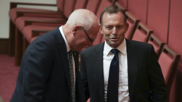 Senator Molan is being supported by former prime minister Tony Abbott.
