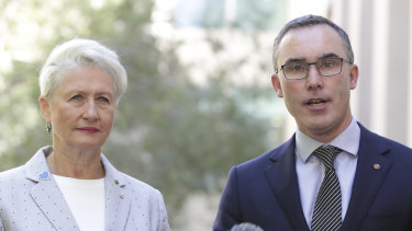 Crossbench MP Kerryn Phelps and independent senator Tim Storer worked closely on the amendments.