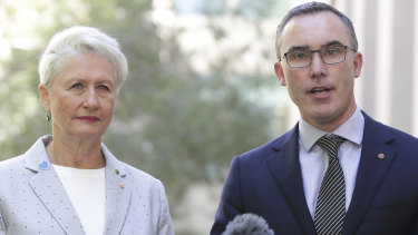 Crossbench MP Kerryn Phelps and independent senator Tim Storer are  both calling for investigations into the advertising spend.