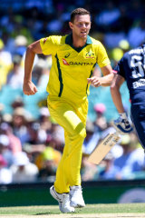Underdone Australian quick Josh Hazlewood is set to  miss out on the World Cup.