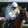 Thompson heads for Grafton on the double after big day at headquarters