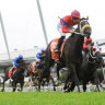 Avilius and Verry Elleegant use Randwick mile as main event indicator