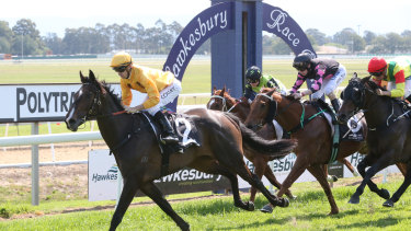 Trainer Lee Curtis is looking  for a change of luck for Giselle Anne at Hawkesbury.