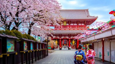 Visiting Japan offers a lesson in peace, tranquility and beauty.
