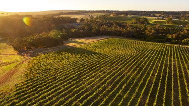 Several big-name wineries in Wilyabrup have lost an initial fight for geographical independence from Margaret River.