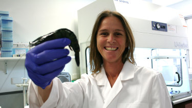 Dr Melony Sellars has developed a testing method for farmed prawns that can detect multiple diseases at once.
