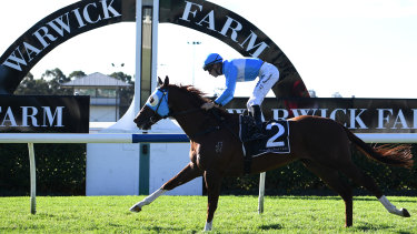 Embracer wins the Events By ATC Plate at Warwick Farm in May this year.