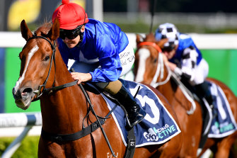 Fituese  will look to wrap up BOBS horse of the year at Rosehill on Saturday.