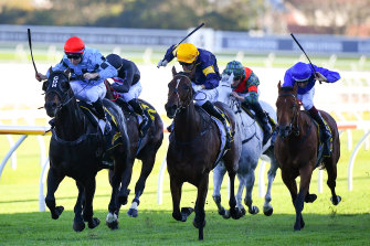 Racing coverage has recorded big spikes in viewership as options for live sport remain restricted to horse racing.