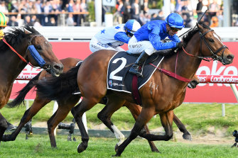 Kerrin McEvoy drives Trekking away from his rivals in the Schillaci Stakes.