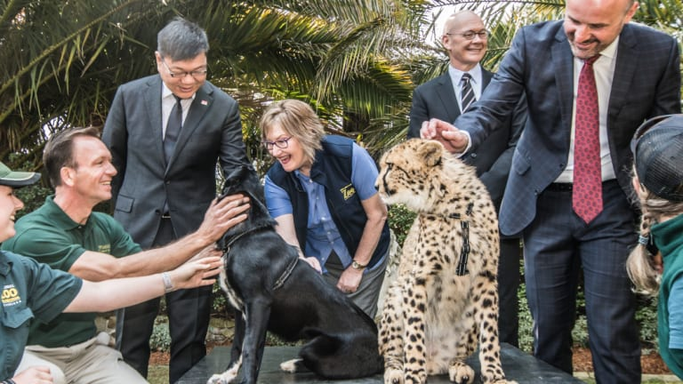 On Monday, a memorandum of understanding was signed between the National Zoo & Aquarium, Wellington Zoo and Singapore Wildlife Reserves signing in Canberra.
