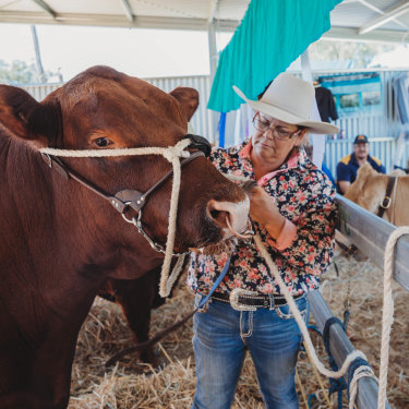 """Cattle farmer Kirrily Johnson-Iseppi with her prize bull at the Oakey Show near Toowomba on Saturday. She says it's """"really disappointing"""" to miss out on the Royal Easter Show."""