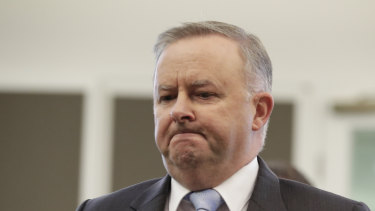 "Opposition Leader Anthony Albanese has banned calling opponents ""liars""."